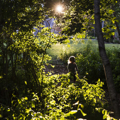 USA, Trenton, Maine. A little girl runs through the bushes while the sun is setting behind her.