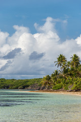 Beautiful exotic Caribbean beach with palm trees in Martinique (Anse Michel)