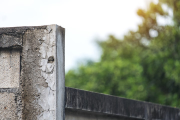 Closeup image of an old white concrete fence wall with blur green nature background