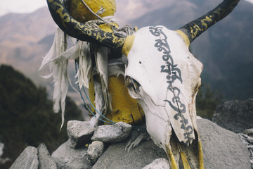 A yak skull is painted with Tibetan prayers on top of Mani stones in Nepal's Everest Region.