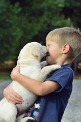 Close-up Of Young Boy Playing With Puppy