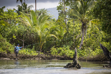 Angler Jonathan Jones casts while fly fishing in Samoa, at a location where a freshwater stream meets the sea in the jungle.