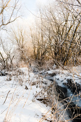 Beautiful winter scene with creek