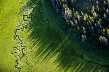 Bear Valley Creek. Boise National Forest, Idaho, USA.
