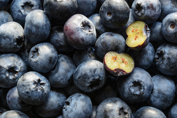 Blueberry background