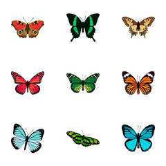 Realistic American Painted Lady, Birdwing, Azure Peacock And Other Vector Elements. Set Of Beauty Realistic Symbols Also Includes Tiger, Monarch, Peacock Objects.