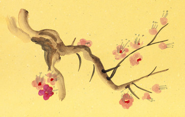 branch of blossoming plum tree