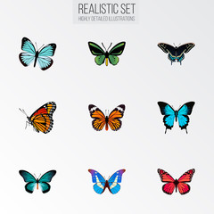 Realistic Papilio Ulysses, Lexias, Tropical Moth And Other Vector Elements. Set Of Moth Realistic Symbols Also Includes Pink, Green, Fly Objects.