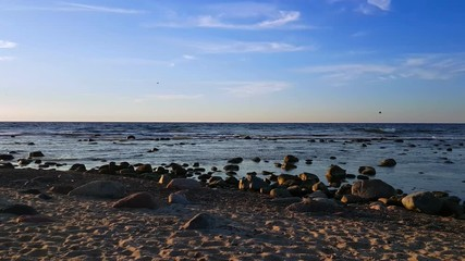 Fototapete - Baltic Sea shore at sunny day time