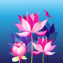 Pink lotuses and a love bird
