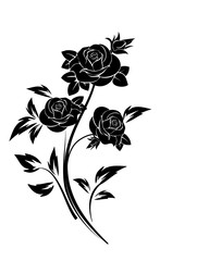 Black silhouette of roses ornament.