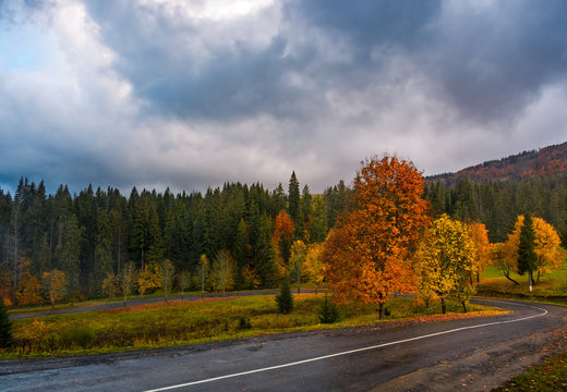 colorful foliage on serpentine in rainy fall weather