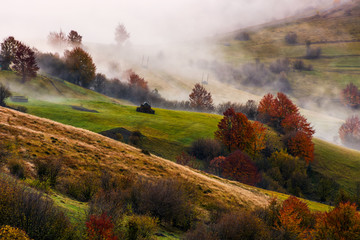 thick fog on hilly rural fields in autumn