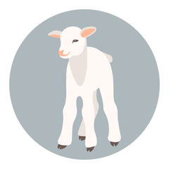kid   goat vector illustration style flat