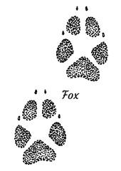 Fox footprint illustration, drawing, engraving, ink, line art, vector