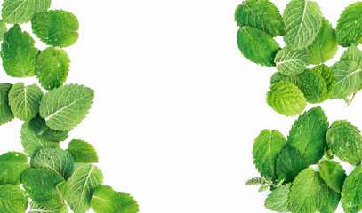 Mint leaves around the edges on a white background
