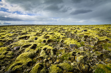 Moss covered landscape with far view to horizon and clouds.