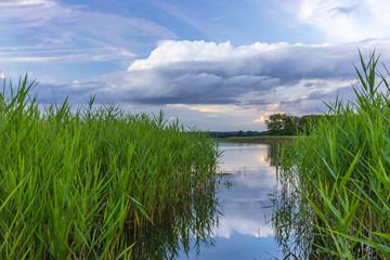 Beautiful lake landscape of the lake Breiter Luzin in Mecklenburg-Western Pomerania, Germany