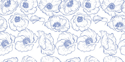 Seamless pattern with blue contoured poppy flowers isolated on white background.  illustration.