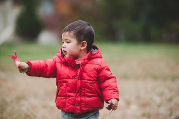 Little boy holding up leaf