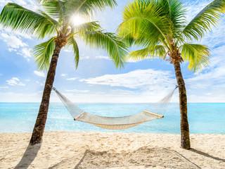 Wall Mural - Urlaub am Palmenstrand mit Sonne und Hängematte
