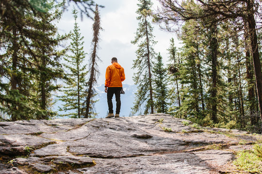 A man standing at the edge of a cliff in the middle of the forest