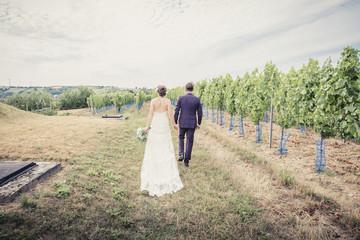wedding couple walking through a wine field