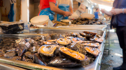 mussels at the fish shop