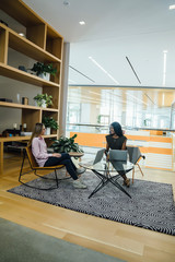 Female business professionals meeting in modern office space