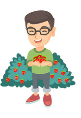 Caucasian boy in glasses holding the berries of fresh strawberries in his hands. Little cheerful boy with handful of strawberries. Vector sketch cartoon illustration isolated on white background.