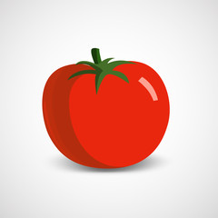 Vector illustration of a big ripe tomato on a white background