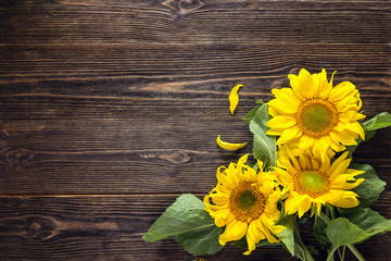 Bouquet of  sunflowers on a dark wooden background. Copy space. Top view.