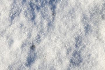 White snow texture