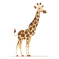Vector cartoon style illustration of giraffe