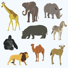 Vector illustration of cute animal set including monkey, giraffe, elephant, zebra, tiger, hippopotamus, antelope, deer, lion
