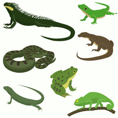 Reptiles and amphibians decorative set icons in cartoon style isolated vector illustration