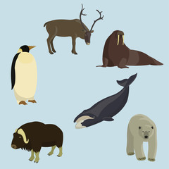 Set of animals of the north