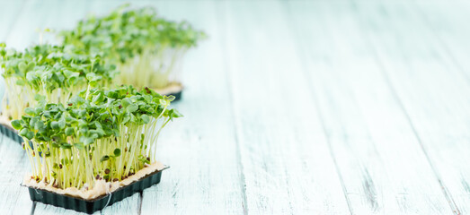 Cress (selective focus) on vintage wooden background