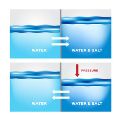 water and aqua osmosis infographic vector