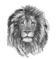 Portrait of a lion. Digital painting.
