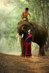 Thailand woman and elephant in wild with young man is mahout