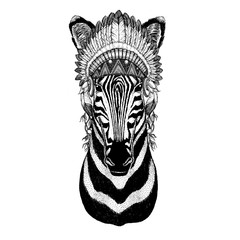Zebra Horse Wild animal wearing indian hat Headdress with feathers Boho ethnic image Tribal illustraton