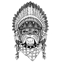 Bulldog Wild animal wearing indian hat Headdress with feathers Boho ethnic image Tribal illustraton