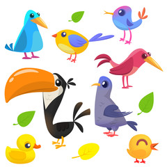 Cute cartoon birds collection. Cartoon set of colorful birds. Vector illustration