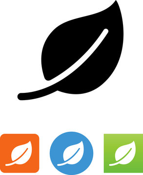 Leaf Icon - Illustration