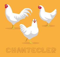 Chicken Chantecler Cartoon Vector Illustration