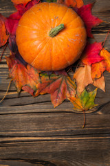 Autumn Fall Background With Pumpkins And Golden Leaves On Rustic Wooden Happy Thanksgiving Card