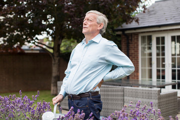 Mature Man Suffering From Backache Whilst Gardening At Home