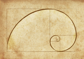 The Golden Spiral / Ancient Script Fibonacci Spiral