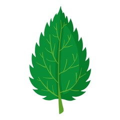 Nettle leaf icon, cartoon style